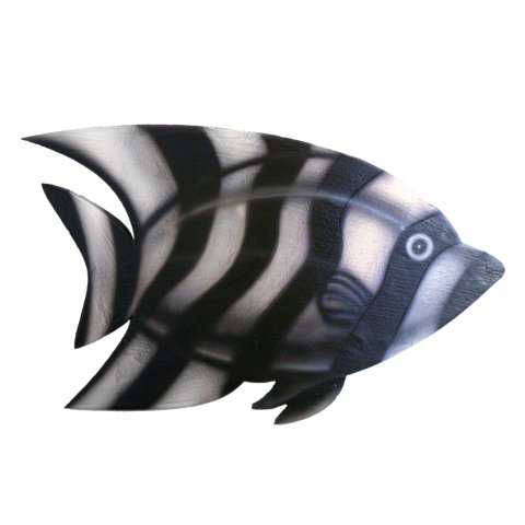 zebra-fish picture