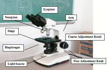 what does the coarse adjustment knob do on a microscope